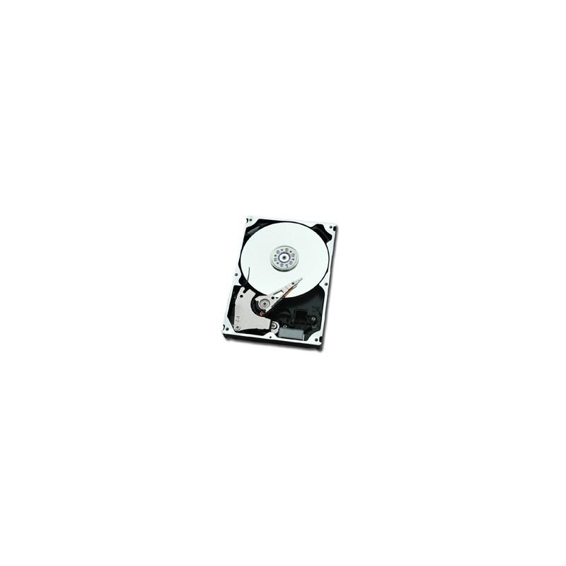 """DX8090 S2 HD NLSAS 2TB 7.2 3.5/2TB, NLSAS, 7200rpm, 8.89 cm (3.5 """")"""